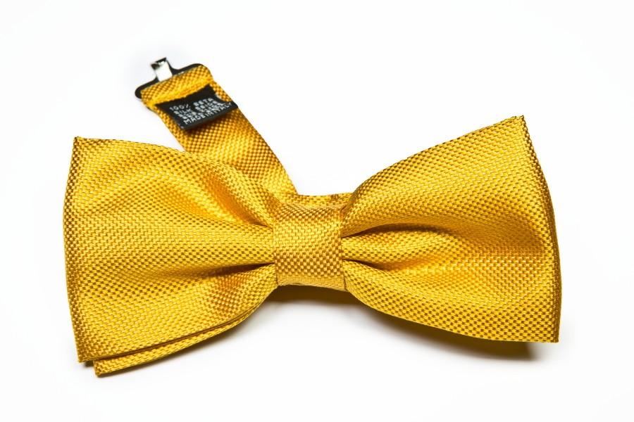 Papillon giallo
